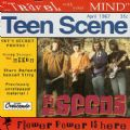 The Seeds - Travel With Your Mind (20 Songs/1993 Crescendo Records) (Imp)